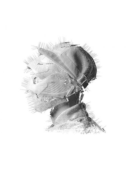 Woodkid.....( Indie Rock) - The Golden Age; 2013/2013; Europe; S/S - 860253727693